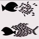 Οργανώνοντας τον αγώνα ενάντια στα προγράμματα «κοινωφελούς» εργασίας